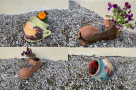 vase ceramia dedeman - bocanc si ulcior pentru gradina